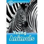 画像: Read and Discover Level 1 Young Animals